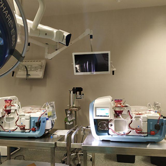 ARK System, dispositivo para preservación de órganos en trasplantes.